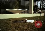 Image of Fallen Vietcong on embassy grounds Saigon Vietnam, 1968, second 6 stock footage video 65675052350