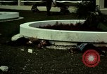 Image of Fallen Vietcong on embassy grounds Saigon Vietnam, 1968, second 51 stock footage video 65675052350