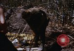Image of American soldiers at captured VC tunnel complex Vietnam, 1968, second 60 stock footage video 65675052380