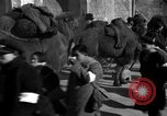 Image of Chinese students China, 1931, second 46 stock footage video 65675052431