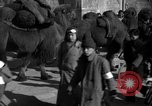Image of Chinese students China, 1931, second 48 stock footage video 65675052431