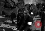 Image of Chinese students China, 1931, second 49 stock footage video 65675052431