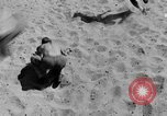 Image of British Eighth Army soldiers North Africa, 1942, second 49 stock footage video 65675052595