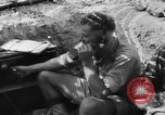 Image of British Eighth Army El Alamein Egypt, 1944, second 62 stock footage video 65675052599