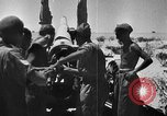 Image of British 7th Armored Division El Alamein Egypt, 1944, second 13 stock footage video 65675052600