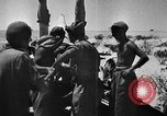 Image of British 7th Armored Division El Alamein Egypt, 1944, second 14 stock footage video 65675052600