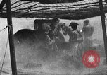 Image of British 7th Armored Division El Alamein Egypt, 1944, second 54 stock footage video 65675052600
