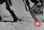 Image of British 7th Armored Division El Alamein Egypt, 1944, second 57 stock footage video 65675052600