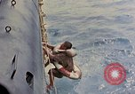 Image of US submarine rescues Japanese survivors at sea Pacific Ocean, 1945, second 10 stock footage video 65675052639