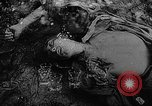 Image of Training of Japanese soldiers in World War II Mariana Islands, 1945, second 21 stock footage video 65675052672
