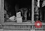 Image of 7th Division infantrymen Kin Okinawa Ryukyu Islands, 1945, second 31 stock footage video 65675052688