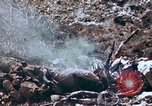 Image of 1st Marine Regiment Shuri Okinawa Ryukyu Islands, 1945, second 27 stock footage video 65675052722