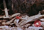 Image of 1st Marine Regiment Shuri Okinawa Ryukyu Islands, 1945, second 47 stock footage video 65675052722