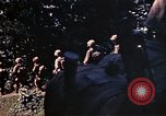 Image of US Marines Okinawa Ryukyu Islands, 1945, second 21 stock footage video 65675052759