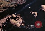 Image of US Marines Okinawa Ryukyu Islands, 1945, second 27 stock footage video 65675052759