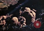 Image of US Marines Okinawa Ryukyu Islands, 1945, second 45 stock footage video 65675052759