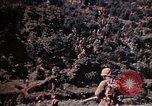 Image of 1st and 2nd Marine Battalions Okinawa Ryukyu Islands, 1945, second 5 stock footage video 65675052761