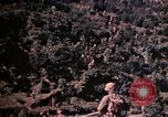 Image of 1st and 2nd Marine Battalions Okinawa Ryukyu Islands, 1945, second 7 stock footage video 65675052761
