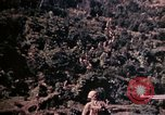 Image of 1st and 2nd Marine Battalions Okinawa Ryukyu Islands, 1945, second 11 stock footage video 65675052761