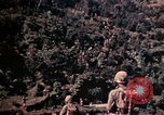 Image of 1st and 2nd Marine Battalions Okinawa Ryukyu Islands, 1945, second 20 stock footage video 65675052761