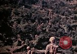 Image of 1st and 2nd Marine Battalions Okinawa Ryukyu Islands, 1945, second 23 stock footage video 65675052761