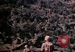 Image of 1st and 2nd Marine Battalions Okinawa Ryukyu Islands, 1945, second 24 stock footage video 65675052761