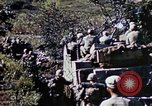 Image of 3rd Battalion 22nd Marines Okinawa Ryukyu Islands, 1945, second 18 stock footage video 65675052817