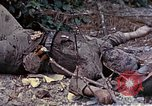 Image of dead bodies of Japanese soldiers Okinawa Ryukyu Islands, 1945, second 1 stock footage video 65675052819