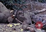 Image of dead bodies of Japanese soldiers Okinawa Ryukyu Islands, 1945, second 4 stock footage video 65675052819