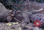 Image of dead bodies of Japanese soldiers Okinawa Ryukyu Islands, 1945, second 5 stock footage video 65675052819
