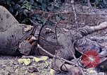 Image of dead bodies of Japanese soldiers Okinawa Ryukyu Islands, 1945, second 11 stock footage video 65675052819