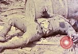 Image of dead bodies of Japanese soldiers Okinawa Ryukyu Islands, 1945, second 13 stock footage video 65675052819
