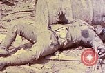 Image of dead bodies of Japanese soldiers Okinawa Ryukyu Islands, 1945, second 14 stock footage video 65675052819