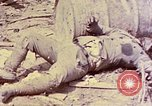 Image of dead bodies of Japanese soldiers Okinawa Ryukyu Islands, 1945, second 15 stock footage video 65675052819