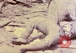 Image of dead bodies of Japanese soldiers Okinawa Ryukyu Islands, 1945, second 16 stock footage video 65675052819