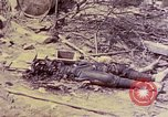 Image of dead bodies of Japanese soldiers Okinawa Ryukyu Islands, 1945, second 23 stock footage video 65675052819