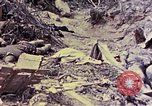 Image of dead bodies of Japanese soldiers Okinawa Ryukyu Islands, 1945, second 41 stock footage video 65675052819