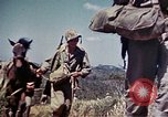 Image of 6th Marine Division 4th Marines Okinawa Ryukyu Islands, 1945, second 9 stock footage video 65675052862