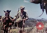 Image of 6th Marine Division 4th Marines Okinawa Ryukyu Islands, 1945, second 10 stock footage video 65675052862
