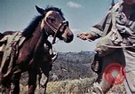Image of 6th Marine Division 4th Marines Okinawa Ryukyu Islands, 1945, second 15 stock footage video 65675052862