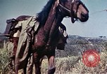 Image of 6th Marine Division 4th Marines Okinawa Ryukyu Islands, 1945, second 18 stock footage video 65675052862
