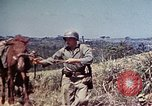 Image of 6th Marine Division 4th Marines Okinawa Ryukyu Islands, 1945, second 19 stock footage video 65675052862