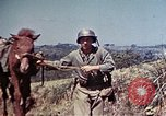 Image of 6th Marine Division 4th Marines Okinawa Ryukyu Islands, 1945, second 20 stock footage video 65675052862