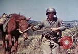 Image of 6th Marine Division 4th Marines Okinawa Ryukyu Islands, 1945, second 21 stock footage video 65675052862
