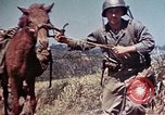 Image of 6th Marine Division 4th Marines Okinawa Ryukyu Islands, 1945, second 22 stock footage video 65675052862