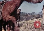 Image of 6th Marine Division 4th Marines Okinawa Ryukyu Islands, 1945, second 25 stock footage video 65675052862