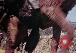 Image of 6th Marine Division 4th Marines Okinawa Ryukyu Islands, 1945, second 26 stock footage video 65675052862