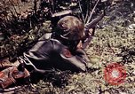 Image of 6th Marine Division 4th Marines Okinawa Ryukyu Islands, 1945, second 44 stock footage video 65675052862