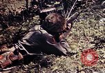 Image of 6th Marine Division 4th Marines Okinawa Ryukyu Islands, 1945, second 45 stock footage video 65675052862