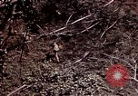 Image of 6th Marine Division 4th Marines Okinawa Ryukyu Islands, 1945, second 52 stock footage video 65675052862